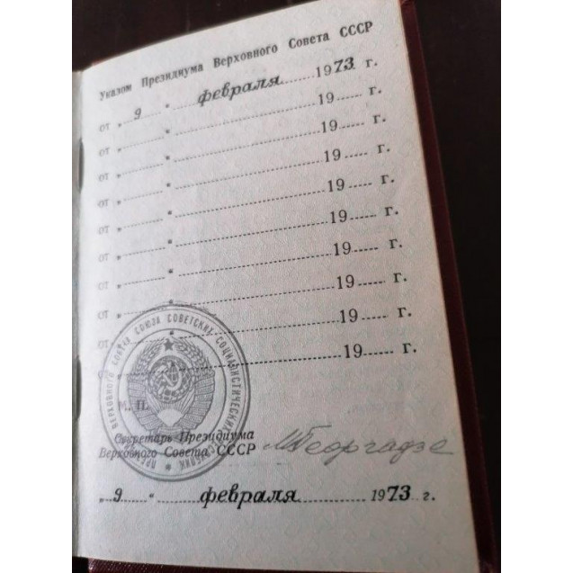 Soviet USSR Russia Hero of Socialistic Labor with CERTIFICATE ! PILOT !